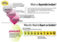 Figure 2: Reporting an Incident to Health Canada