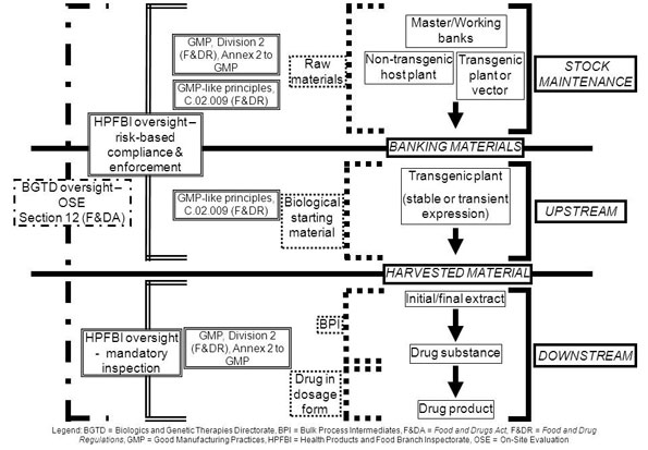 Fig 1. Application of GMP and Health Canada Oversight for Plant-Derived Biologic Drugs Produced in Whole Plants