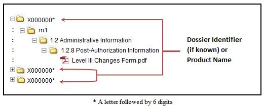 Figure 1: Sample folder structure for Level III Changes Form