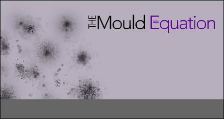 The Mould Equation