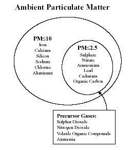Figure 1 Generalized chemical composition of particulate matter