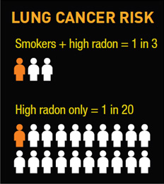 Differences in risk of lung cancer between smokers and non-smokers exposed to radon