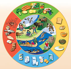 First Nations, Inuit and Métis food guide image