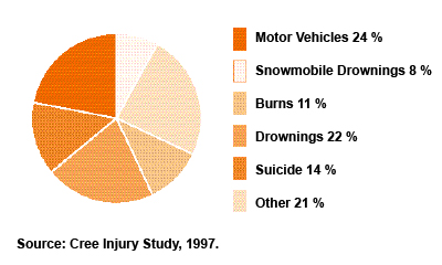 Figure 5: Deaths from Suicide and Other Injuries Cree of Eastern James Bay 1982-92, (n=72)