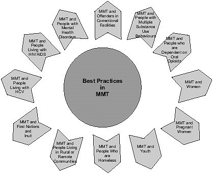 Best Practices in MMT - Meeting the Needs of Specific Groups image