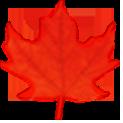 Health Canada Flag logo